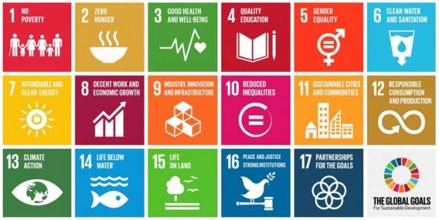 De 17 globala målen som antagits av FN